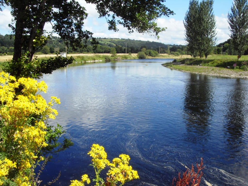 Irland Urlaub Cork River Lee
